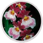 Orchid Group Round Beach Towel