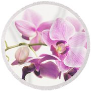 orchid II Round Beach Towel