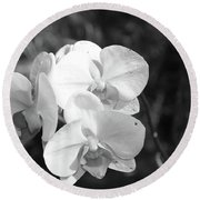 Orchid In Black And White Round Beach Towel