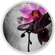 orchid IV Round Beach Towel
