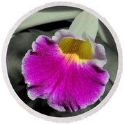 Orchid Of A Different Color Round Beach Towel