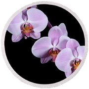 Pink Orchid I Round Beach Towel