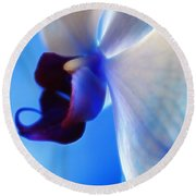 Orchid Serenity Round Beach Towel