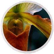 Orchid Slipper Round Beach Towel