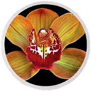 Orchid Splendor Round Beach Towel
