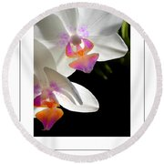 Orchid Spring Poster Round Beach Towel