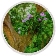 Orchid Tree Round Beach Towel