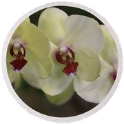 Orchid White Trio Round Beach Towel