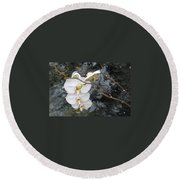 Orchids And Water Round Beach Towel