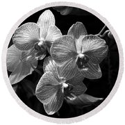 Orchids In Black And White Round Beach Towel