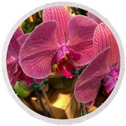 Orchids In Bloom Round Beach Towel