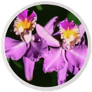 Orchids In Costa Rica Round Beach Towel