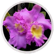 Orchids In Fuchsia  Round Beach Towel