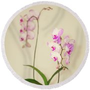 Orchids On Sideboard Round Beach Towel