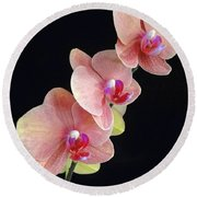 Orchids Reach For The Rainbow Round Beach Towel