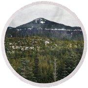 Oregon Cascade Range Forest Round Beach Towel