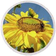 Oregon Gardens Silverton Sunflower Honeybee Baslee  Round Beach Towel