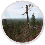 Oregon Landscape - Confused Tree At Lava Butte Round Beach Towel
