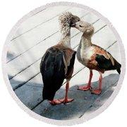 Orinoco Geese Touching Heads On A Boardwalk Round Beach Towel