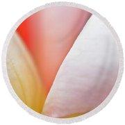 Ornamental Rose Flower Details Round Beach Towel