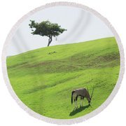 Oryx On Hill Round Beach Towel