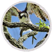 Osprey 4 Round Beach Towel
