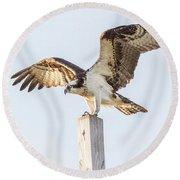 Osprey 8140 Round Beach Towel
