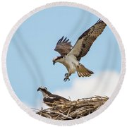 Osprey Approach Round Beach Towel