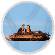 Osprey At Home Round Beach Towel