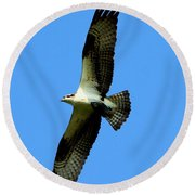 Osprey Carrying A Fish Round Beach Towel