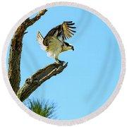Osprey Landing Round Beach Towel
