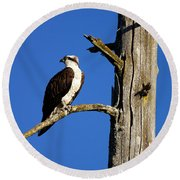 Osprey Nest Guard - 001 Round Beach Towel
