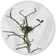 Osprey Nest Round Beach Towel