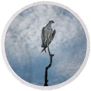Osprey On Top Of The World Round Beach Towel
