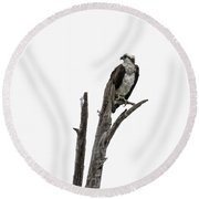 Osprey Perched Above The Rogue River Round Beach Towel