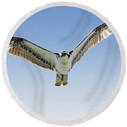 Osprey Soar Search Round Beach Towel
