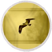 Osprey Soaring Into Golden Sunlight Round Beach Towel