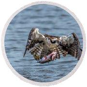 Osprey With Catch 9108 Round Beach Towel