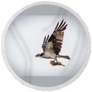 Osprey With Fish 8138 Round Beach Towel