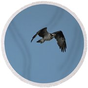 Osprey With His Wings Flapping Round Beach Towel