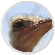 Ostrich Head Close Up Round Beach Towel