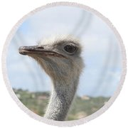 Ostrich Head II Round Beach Towel