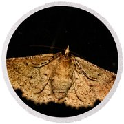 Other Side Of The Moth On The Window Round Beach Towel