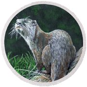 Otter On Branch Round Beach Towel