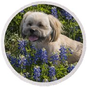 Our Bud In The Bonnets Round Beach Towel