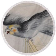 our cockatiel  Coco Round Beach Towel