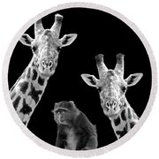 Our Wise Little Friend - Monkey And Giraffes In Black And White Round Beach Towel