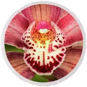 Outstanding Orchid Round Beach Towel