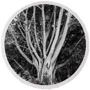 Outstretched Round Beach Towel