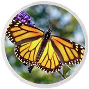 Outstretched Monarch Round Beach Towel